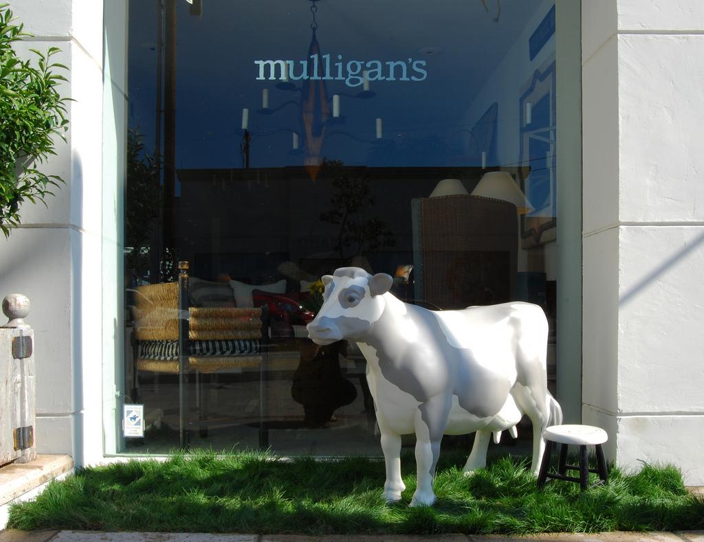 mulligans-cow